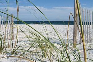 Photos from Capt'n Fun Beach Club on Pensacola Beach